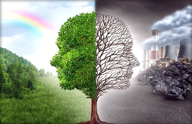 Понятие и сущность экологических прав граждан