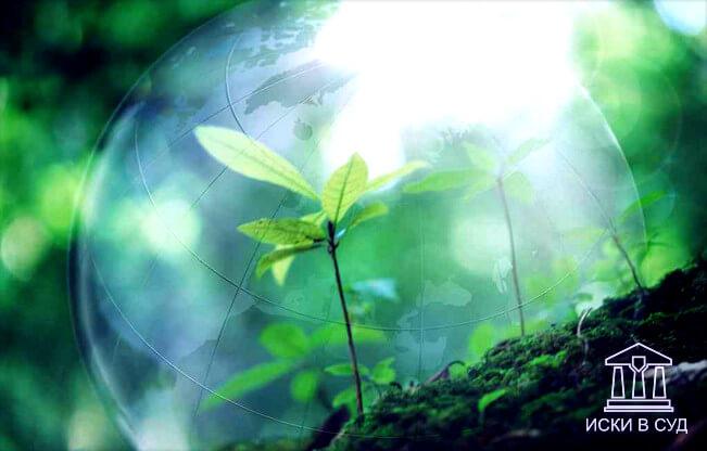 Экологические правоотношения: понятие, сущность, содержание