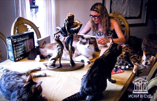 Ненормальные соседи с кошками
